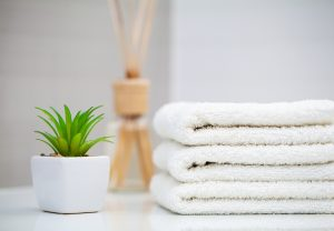 plant_next_to_stacked_white_towels